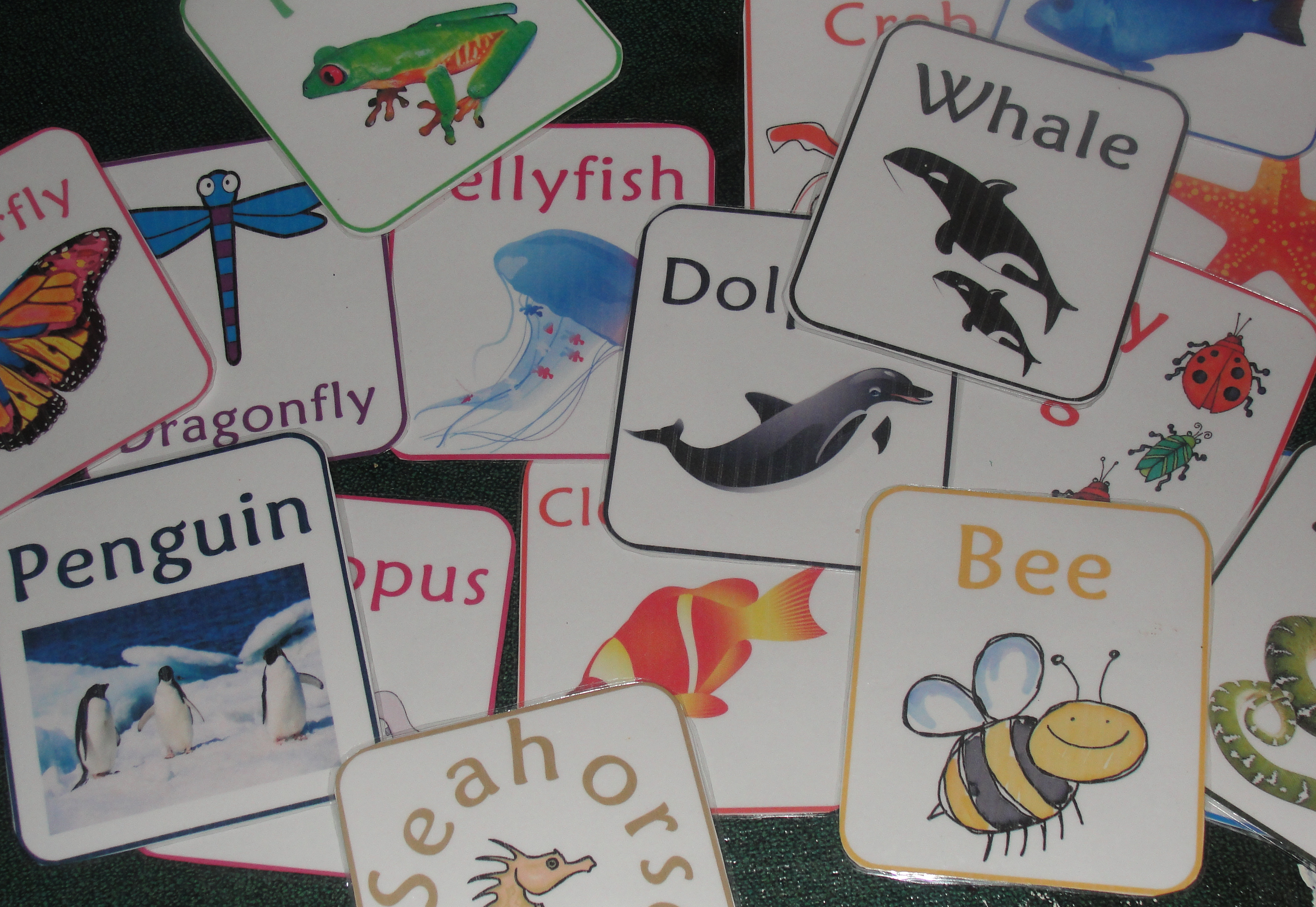 Busy Bag Ideas with Links and Printables - Sprouting Tadpoles